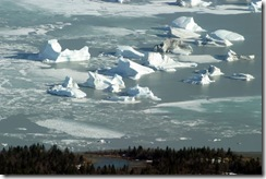 Ice bergs in lake