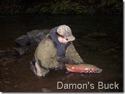Damon's Buck