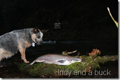 Indy and a buck