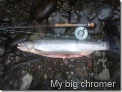 My big chromer