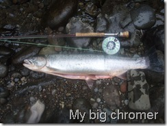 My big chromer